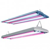 AgroLED T5 LED HO Combination Fixture 44 - 4 ft 4 Lamp